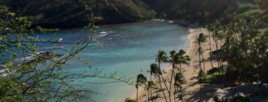 Hanauma Bay Nature Preserve is one of Adventures in O'ahu.