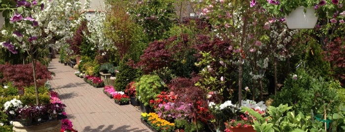 Chelsea Garden Center is one of [ Do ].