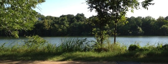 Ladybird Lake Hike & Bike Trail (Rainey St.) is one of Get outdoors.