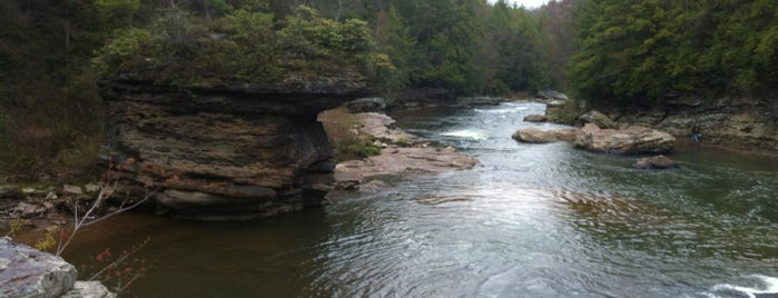 Swallow Falls State Park is one of Maryland Activities Bucket.