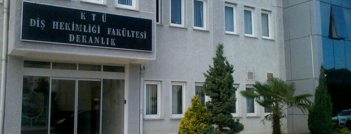 Diş Hekimliği Fakültesi is one of Sfjdjdn : понравившиеся места.