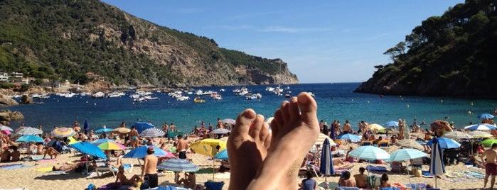Mar I Vent is one of Terrazeo en la costa catalana.