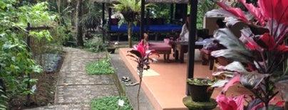 Ubud Sari Health Resort is one of Hnmn.
