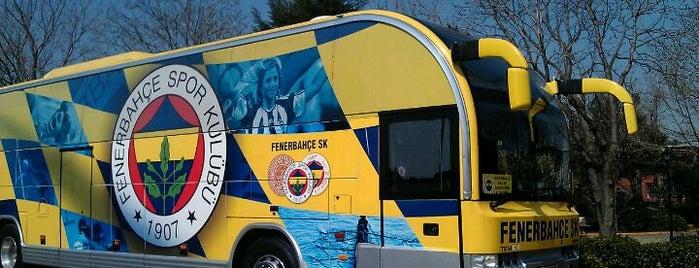 Fenerbahçe SK Dereağzı Lefter Küçükandonyadis Tesisleri is one of Tempat yang Disukai orkun.