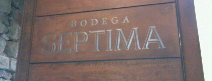 Septima Bodegas is one of Experience Mendoza.