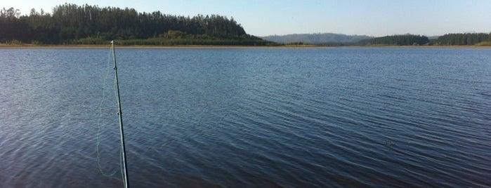 Lago Peñuelas is one of Paola 님이 좋아한 장소.