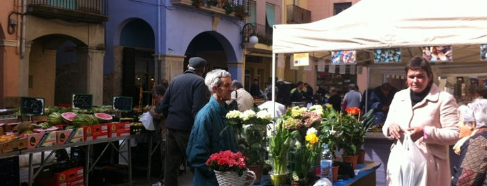 Plaça de l'Oli is one of Festa de la #calçotada de Valls.