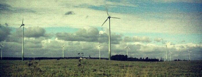 Grobiņas vēja ģeneratori is one of Lugares favoritos de v.
