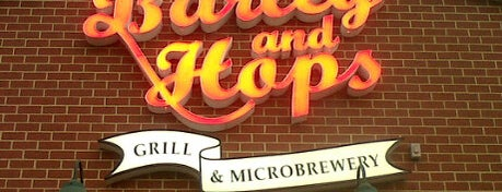 Barley And Hops Grill & Microbrewery is one of Best Breweries in the World.