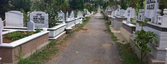 Kıranköy Mezarlığı is one of Yunusさんのお気に入りスポット.