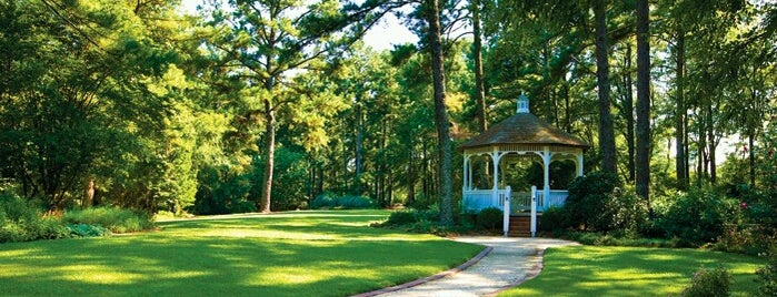 Cape Fear Botanical Garden is one of Crispin 님이 좋아한 장소.