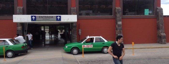 Terminal De Autobuses is one of Posti che sono piaciuti a Cosette.