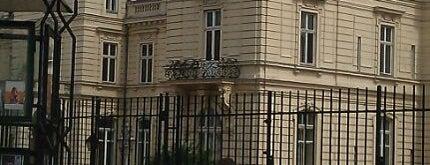 Potocki-Palast is one of Lviv.