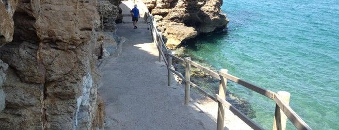 Platja de l'Illa Roja is one of Costa Brava.