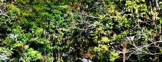 Cachoeira dos Pretos is one of Tempat yang Disukai Alex Henrique.