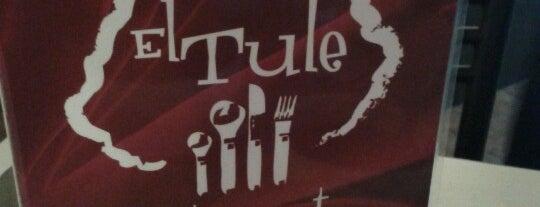 El Tule is one of Orte, die Daniela Ivonne gefallen.
