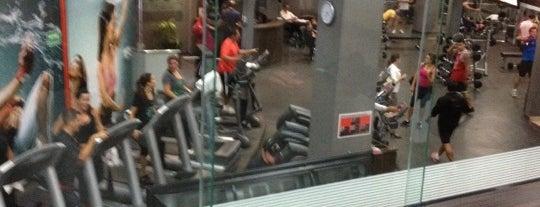 GO! Fitness is one of Alejandro'nun Beğendiği Mekanlar.