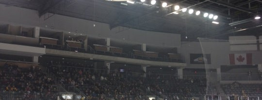 Leon's Centre is one of OHL Arenas.
