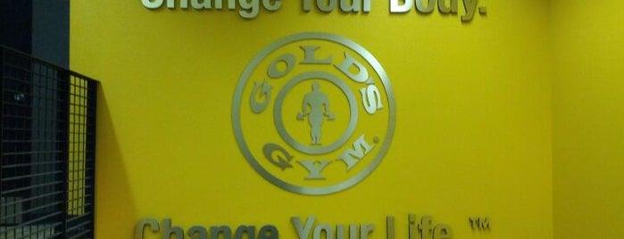Gold's Gym is one of Locais curtidos por sydney.