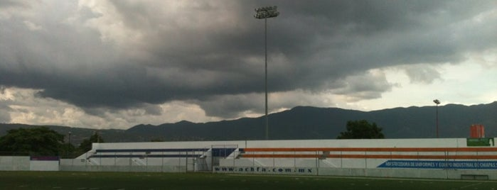 Estadio Samuel León Brindis is one of Lieux qui ont plu à Saulo.