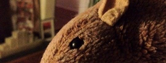 House of Bunny is one of Posti che sono piaciuti a James.