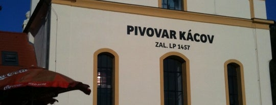 Pivovar Kácov is one of Pivovary ČR - Czech Breweries.