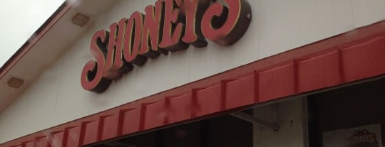 Shoney's is one of Places With Mostly Bad Reviews.