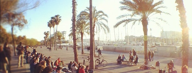 La Barceloneta is one of Qué ver en Barcelona.