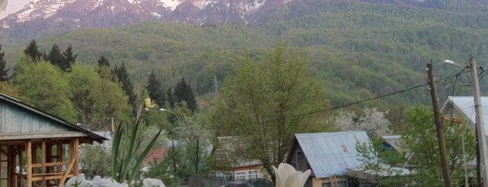Трикони is one of สถานที่ที่ Olga ถูกใจ.