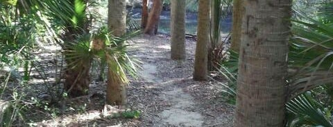 Tomoka State Park is one of Things To Do.