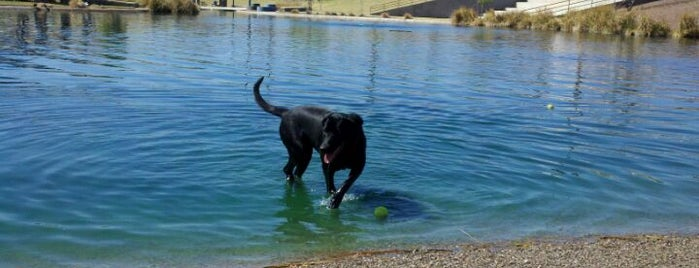 Cosmo Dog Park is one of Jump Around.