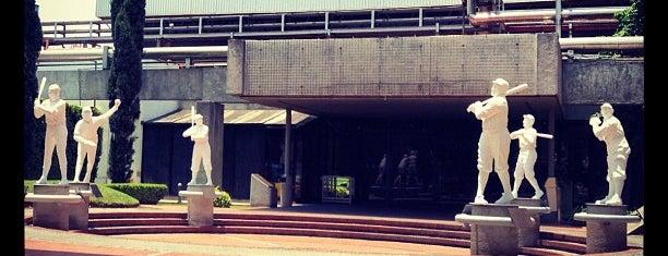 Salón de la Fama is one of Museos.