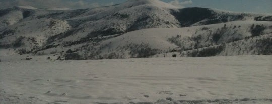 Zlatibor is one of Out of Belgrade.