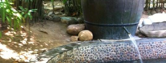 珠江南田温泉 Pearl River Nantian Resort & SPA is one of Locais curtidos por Finwe.
