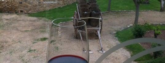 Museo del vino is one of De Tapeo con los Becquer.