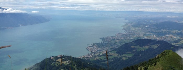 Rochers de Naye is one of Montreux.