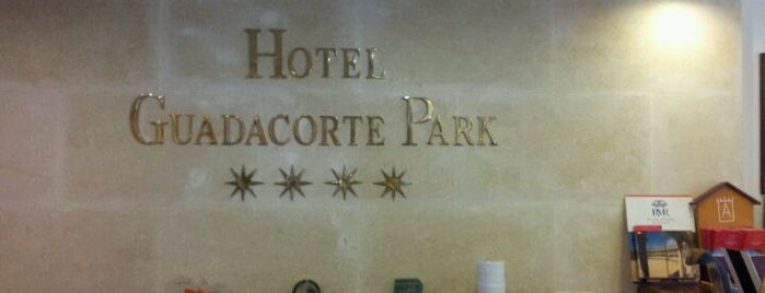 Hotel Guadacorte Park is one of Esra's Liked Places.