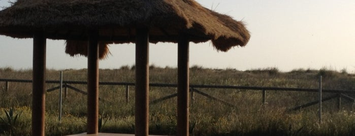Gran Baba is one of Lugares favoritos de Wabi Sabi.