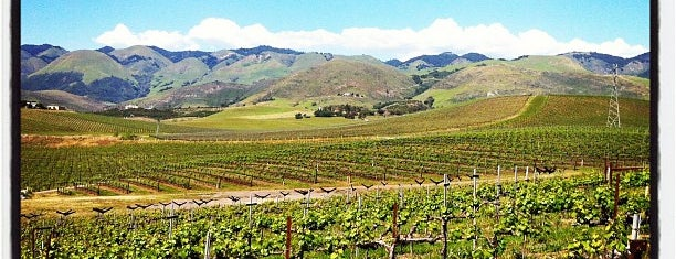 Wolff Vineyards is one of SLO Wine Country.