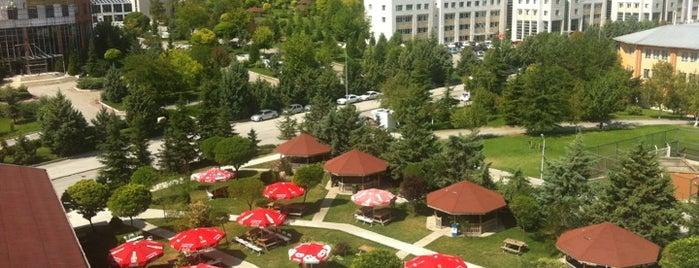 Başkent Üniversitesi is one of สถานที่ที่ ES ถูกใจ.
