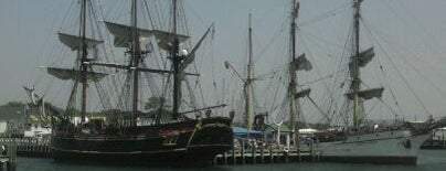 HMS Bounty is one of Ships (historical, sailing, original or replica).