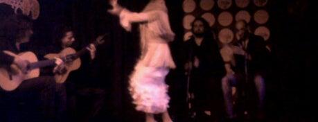Cardamomo is one of Où voir un spectacle de flamenco à Madrid ?.