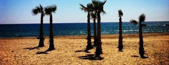 Playa de El Campello is one of Paolaさんのお気に入りスポット.