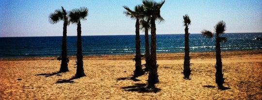Playa de El Campello is one of Tempat yang Disukai Paola.