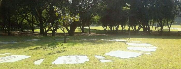 Parque da Juventude is one of Sampa 460 :).