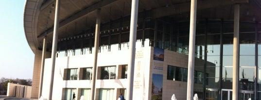 Palacio de Congresos de Valencia is one of Lugares favoritos de David.