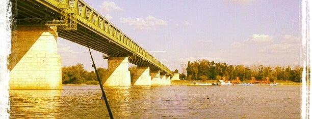 Újpesti vasúti híd is one of Tamás Márk : понравившиеся места.