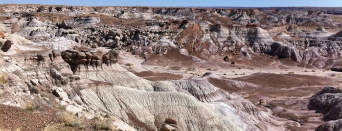 Petrified Forest National Park is one of US Landmarks.