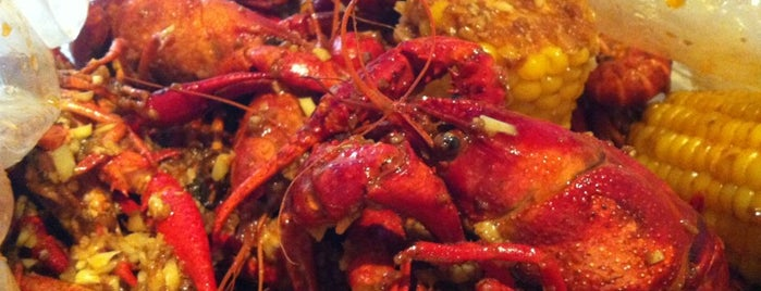 Crawfish Fusion is one of SF.