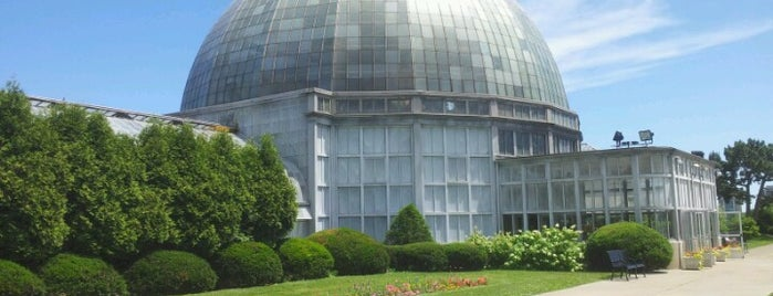 Anna Scripps Whitcomb Conservatory is one of Michigan.